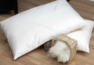 No_wool_pillow (1)